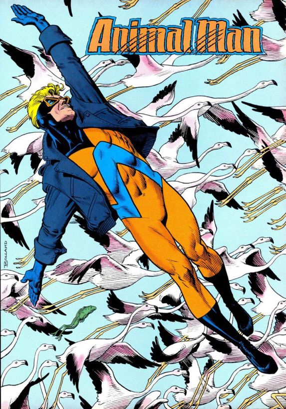 Animal Man by Brian Bolland