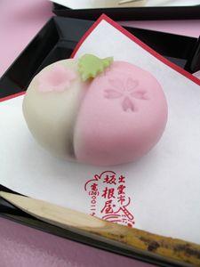 Wagashi Japanese Cake