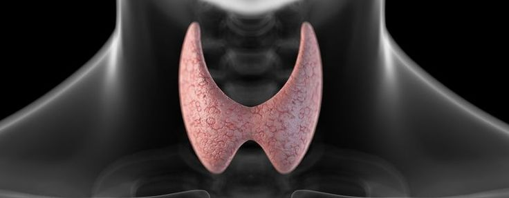 Find out if you might have thyroid issues with this simple, engaging quiz.