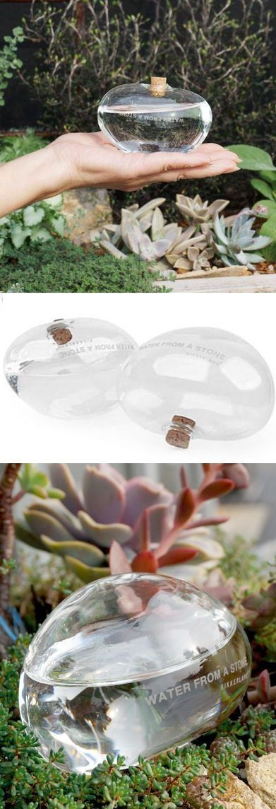 Glass Stone slowly waters your Plant. Great for when you're traveling. by Blissful