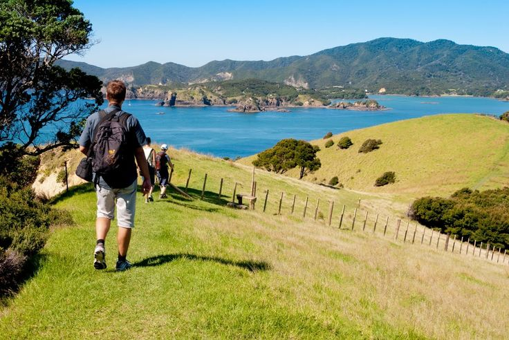 Must Do New Zealand - The Bay of Islands