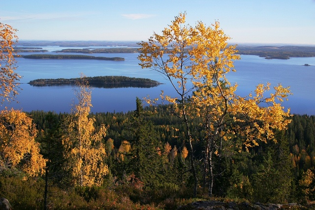 Lake Pielinen in Koli by Visit Finland, via Flickr