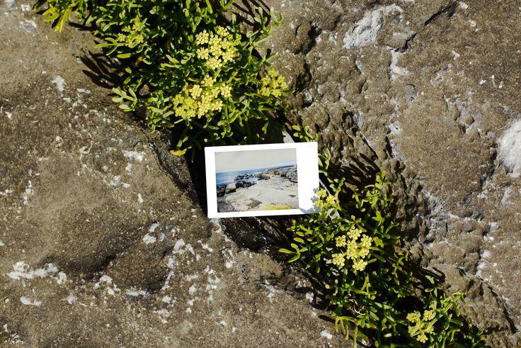Les Petits Polas | Aran Islands, Wormhole