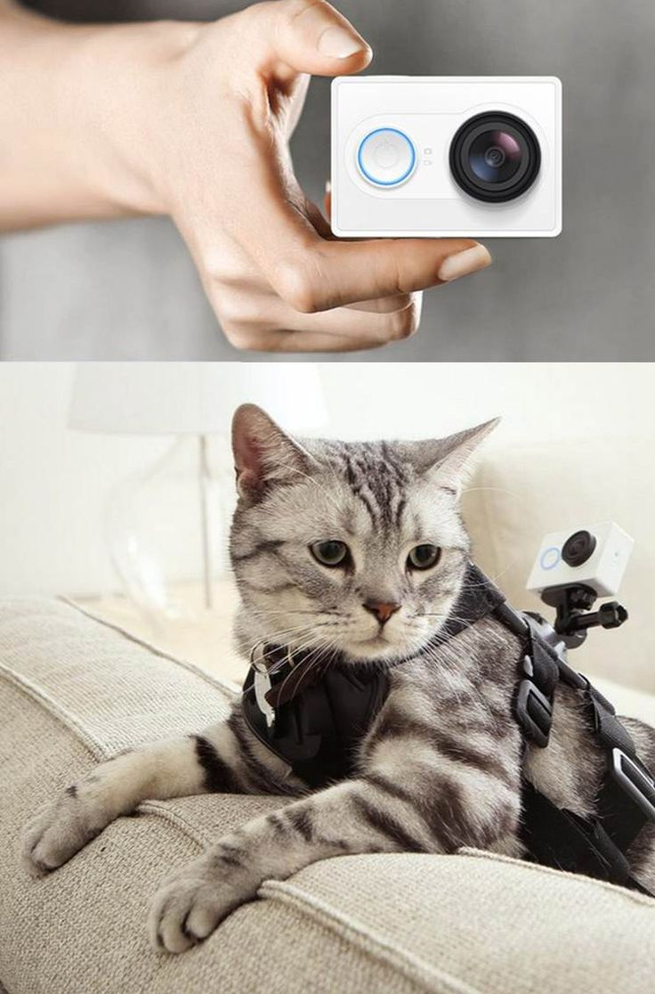 Xiaomi launched new action camera- Xiaomi Yi Sports. Read more MWC2015 news on ► http://tnw.to/mwc2015