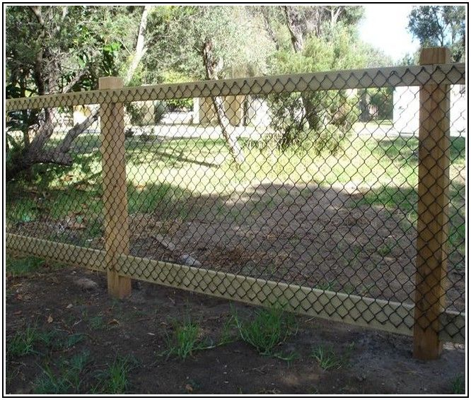 Cheap Fence Ideas To Embellish Your Garden And Your Home | Home Decor |  Pinterest | Fence, Dog Fence And Yard