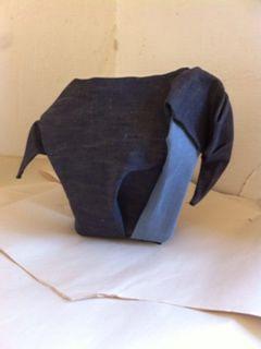 Elephant fold in progress