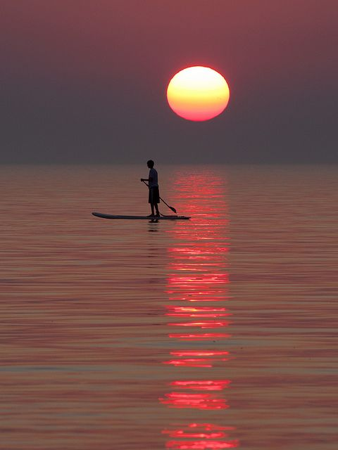 paddle board at sunset