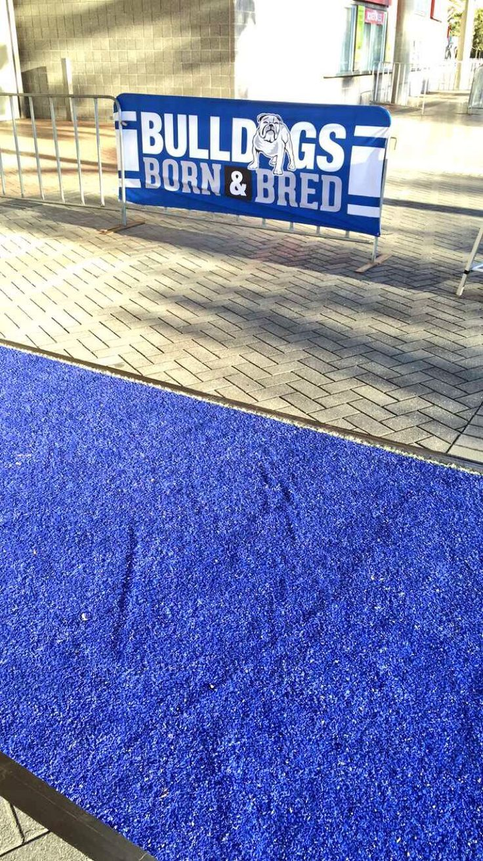 NRL Bulldogs ANZ Stadium blue carpet for members
