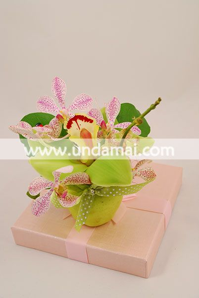 MARTISOR cu doua tipuri de Orhidee in mar verde