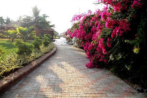 The Fern Beira Mar ResortSituated by the sea, this hotel is within 2 mi (3 km) of Maria Hall, Sernabatim Beach, and Vaddi Beach. Goa Chitra Museum and St. John the Baptist Church are also within 3 mi (5 km). Swimming poolCourtesy breakfastHigh-speed Internet#hotels #Goa #vacation #travel #India #hotels #resorts