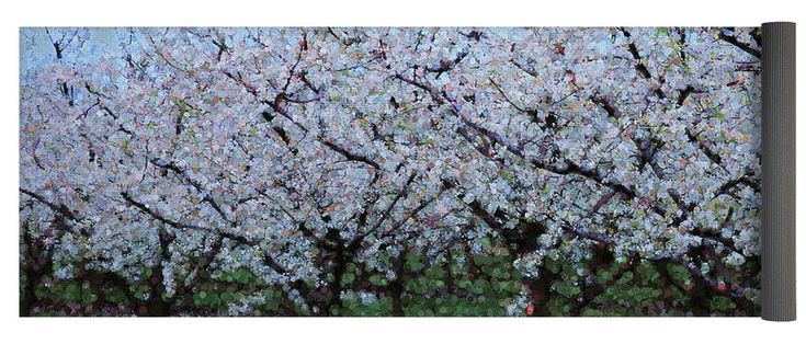 """Springtime In The Cherry Orchard Yoga Mat by Leslie Montgomery.  This yoga mat is 24"""" x 72"""" in size and made from eco-friendly PVC.  It comes with black carrying bag and a 30-day money-back guarantee."""