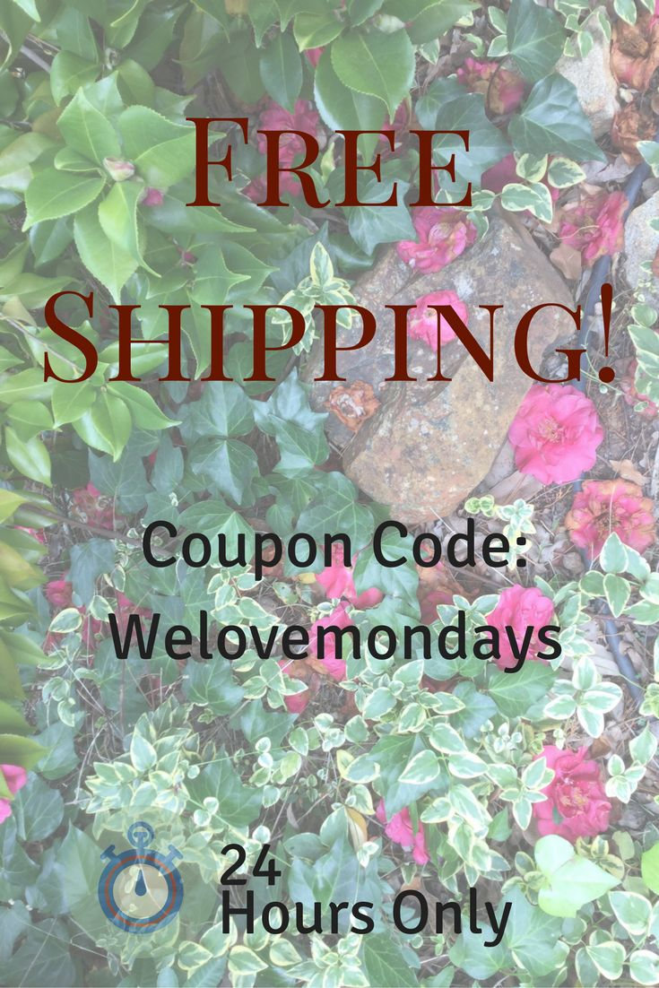 Free Shipping for the next 24 hours! Nationwide.  Follow for more flash sales, new products and more garden goodness!