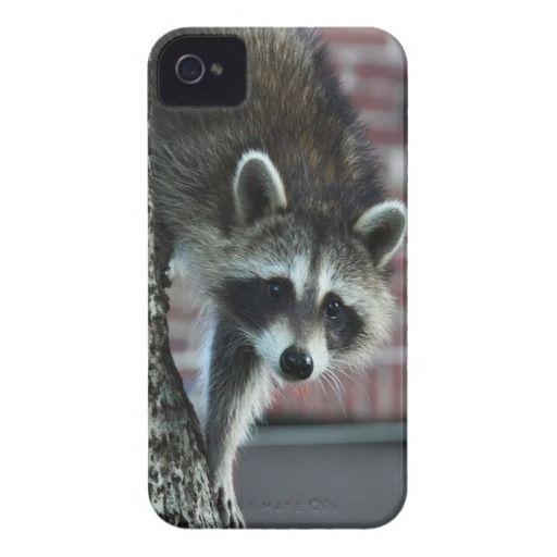 >>>This Deals          	Visitor iPhone 4 Cases           	Visitor iPhone 4 Cases today price drop and special promotion. Get The best buyDiscount Deals          	Visitor iPhone 4 Cases please follow the link to see fully reviews...Cleck Hot Deals >>> http://www.zazzle.com/visitor_iphone_4_cases-179059818207714871?rf=238627982471231924&zbar=1&tc=terrest