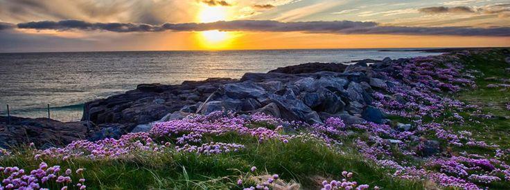 Viaggio Scozia, Isole Ebridi e Orcadi - Gran Bretagna