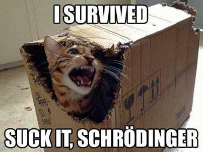 Hahaha! Suck it, Schrödinger.