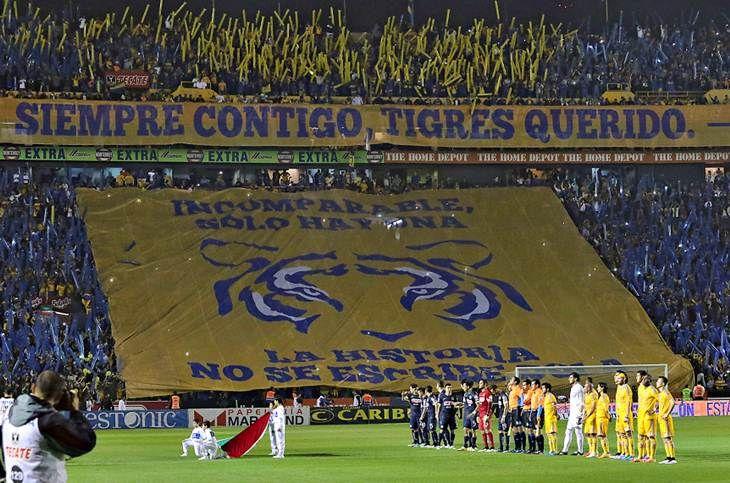 Image result for UANL Tigres futbol supporters