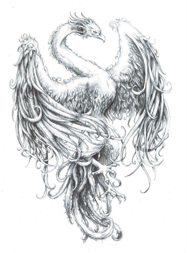 Image detail for -Phoenix Tattoo Patterns #13 | Tattoology