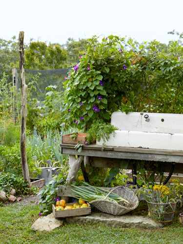 Use an old sink, set atop a found-wood pedestal, to offer a convenient spot for hosing off vegetables. #gardens