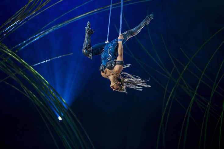 The aerial straps act from Amaluna performed by the Valkyries