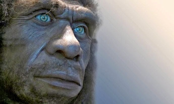 Remnants of Neanderthal DNA in modern humans are associated with genes affecting type 2 diabetes, Crohn's disease, lupus, biliary cirrhosis and smoking behavior. They also concentrate in genes that influence skin and hair characteristics. At the same time, Neanderthal DNA is conspicuously low in regions of the X chromosome and testes-specific genes.   Many of the Neanderthal genes that live on in people today are involved in making keratin, a protein used in skin, hair and nails [Credit…
