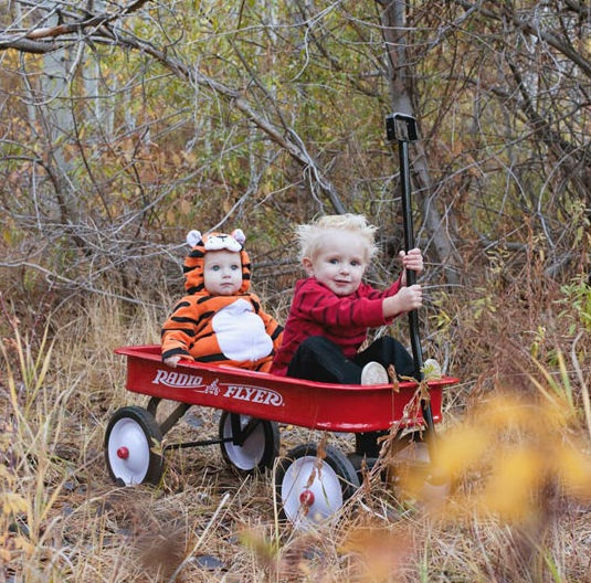 Calvin and Hobbes out for a ride before trick or treating…