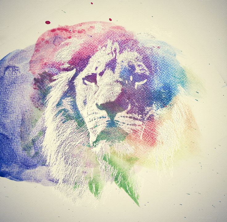 Watercolor painting of lion. by Photocreo Michal Bednarek on @creativemarket