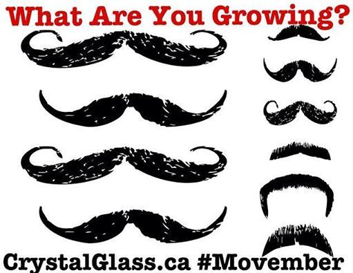 Grow a moustache & join the fight against Prostate Cancer Canada - For more information on how to participate & donate click the following link -> http://ca.movember.com/   Could you do us a huge favour? Please share & spread the word for a great cause!  www.CrystalGlass.ca #Glass #Canada