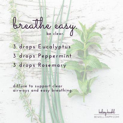 Essential oil diffuser blend for colds and congestion -- breathe easy -- eucalyptus peppermint and rosemary