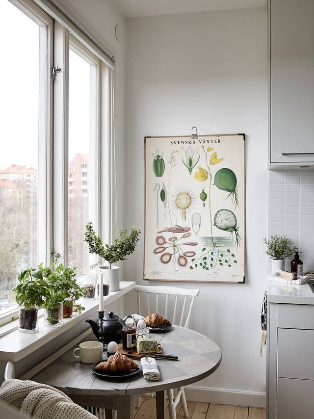 Affordable Art Ideas - Botanical Art | Botanical prints and floral art ideas are big ways to add quick and easy art to any room.