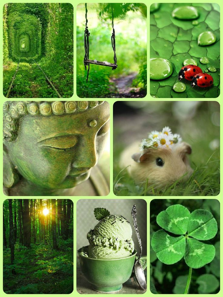 Green Life, Emerald Green, Mood Boards, Collages, Dream Collage, Lime,  Pantone Color, Color Pallets, Mondo