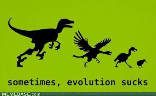 sometimes, evolution sucks