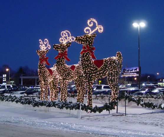 Commercial Outdoor Christmas Tree Lights: Commercial Holiday Displays, Commercial Christmas