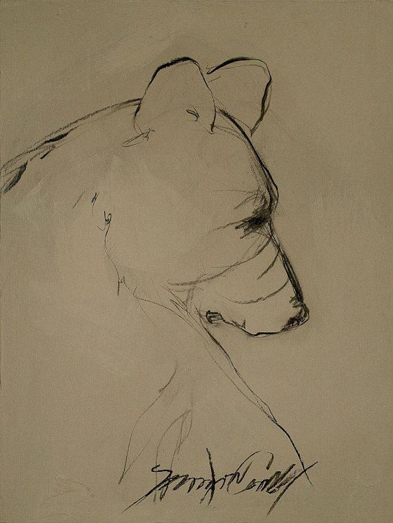 One Line Art Bear : Best line drawing art ideas on pinterest continuous