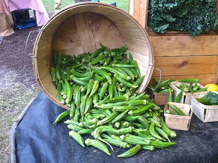 All About Okra: Tips for Buying, Storing, and Cooking Okra