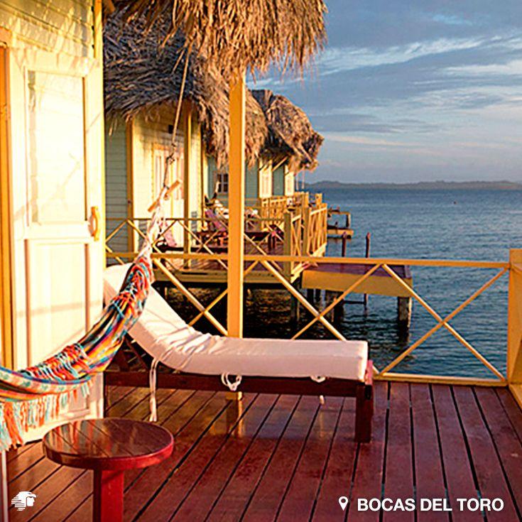 Bocas del Toro, Panamá. Parte de su encanto es que nació hace poco al turismo, y nada se revela tan fácilmente. Seguramente otros jardines permanecerán secretos bajo el agua por mucho tiempo, para felicidad de los peces.