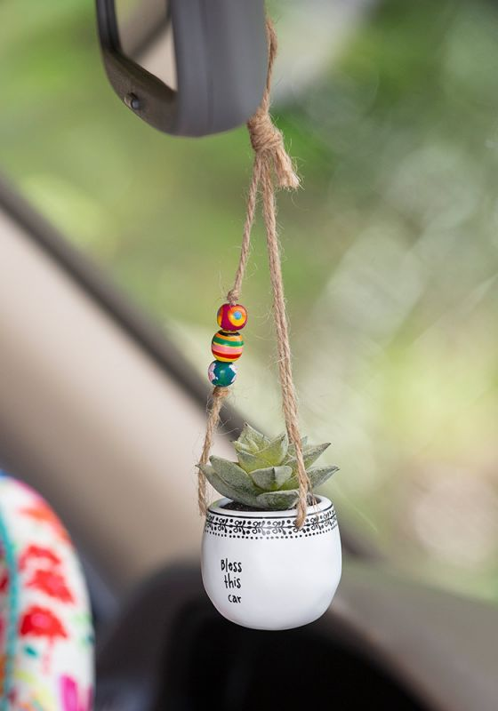 Does anyone need a mini succulent hanging from their rearview mirror? Nope. But …