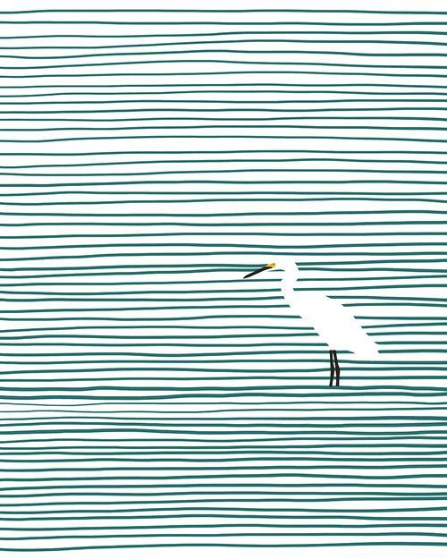 Snowy egret wading in Crissy Field estuary.