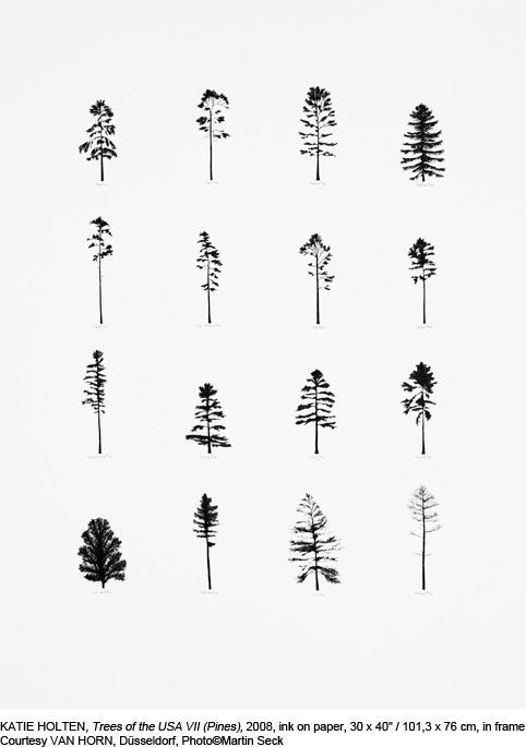KATIE HOLTEN, Trees of the USA VII (Pines), 2008, ink on paper, 101,3 x 76 cm, in frame