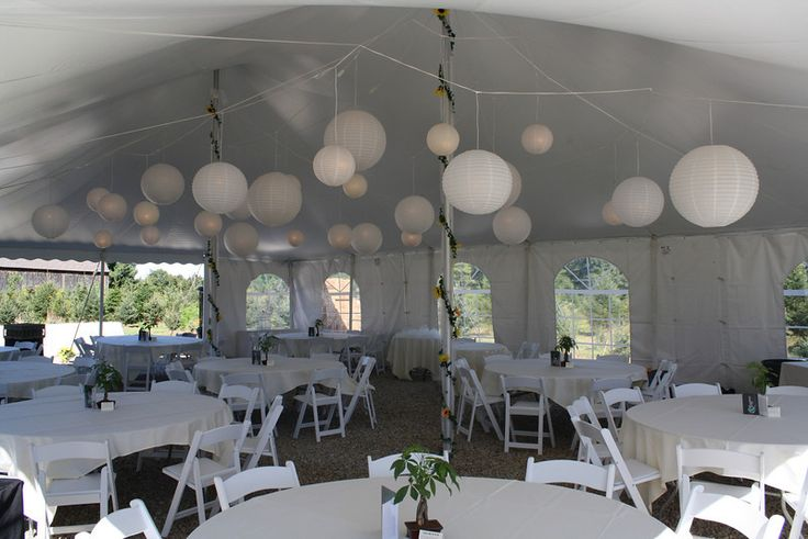 Backyard Tent Wedding- We used 30 lanterns to light and decorate this tent. These lanterns were the only lighting in the tent and they gave plenty of light without looking industrial. The tent poles were covered in white tulle and greenery with sunflowers. Tent Wedding in Broadbrook - MJ Decorations and Home Improvement | SmugMug