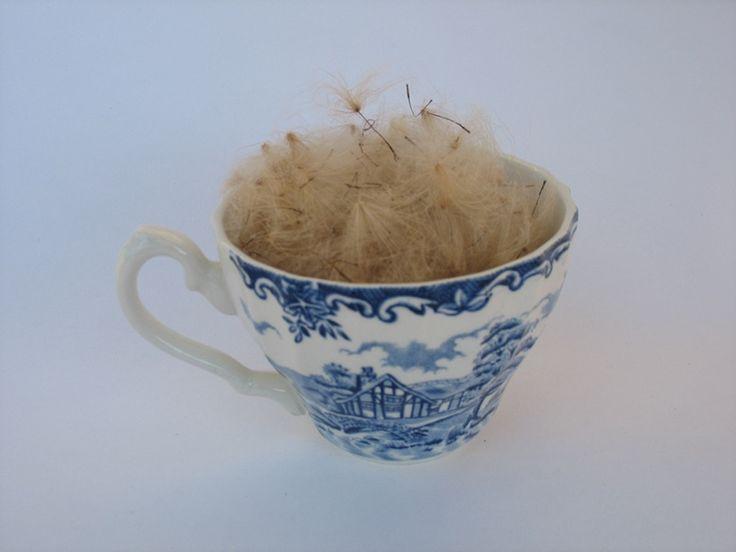 GibsonSaidhbhín_Hot cup of fluff