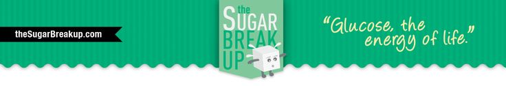 Why I Quit Sugar | TheSugarBreakup.com