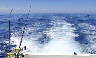 Up to 54% Off Deep-Sea Fishing Trip