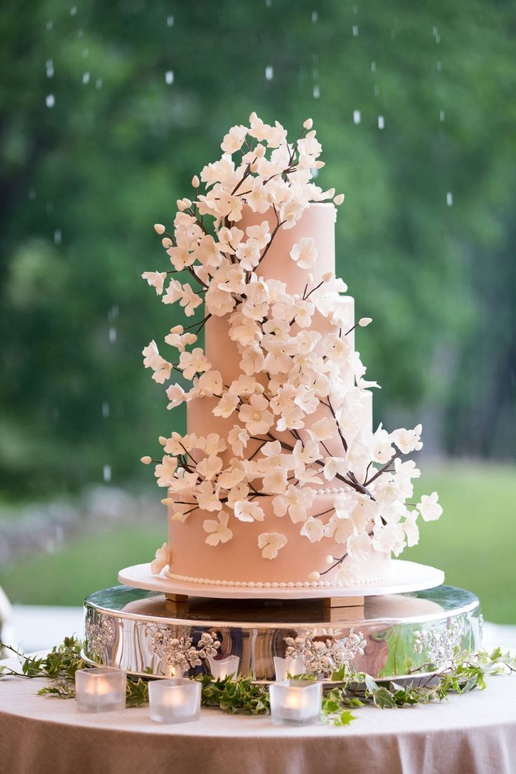 Tented Backyard Wedding With Equestrian Details At A Family Farm In 2020 Cherry Blossom Wedding Cake Cherry Blossom Wedding Cherry Blossom Wedding Theme