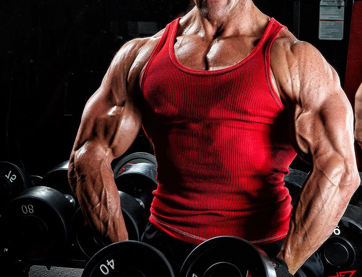 Legit #Steroid are the base of present day bodybuilding practice and these are equally popular in the Sports people as well as common people. But always obtain legal best quality #Steroid through online with your credit or debit card for your fitness.  http://throuspharma55.blog.com/2015/12/04/buy-steroids/