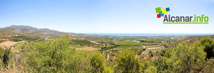 Una panoràmica de part del terme... #Alcanar #Tarragona #Catalunya #Montsia