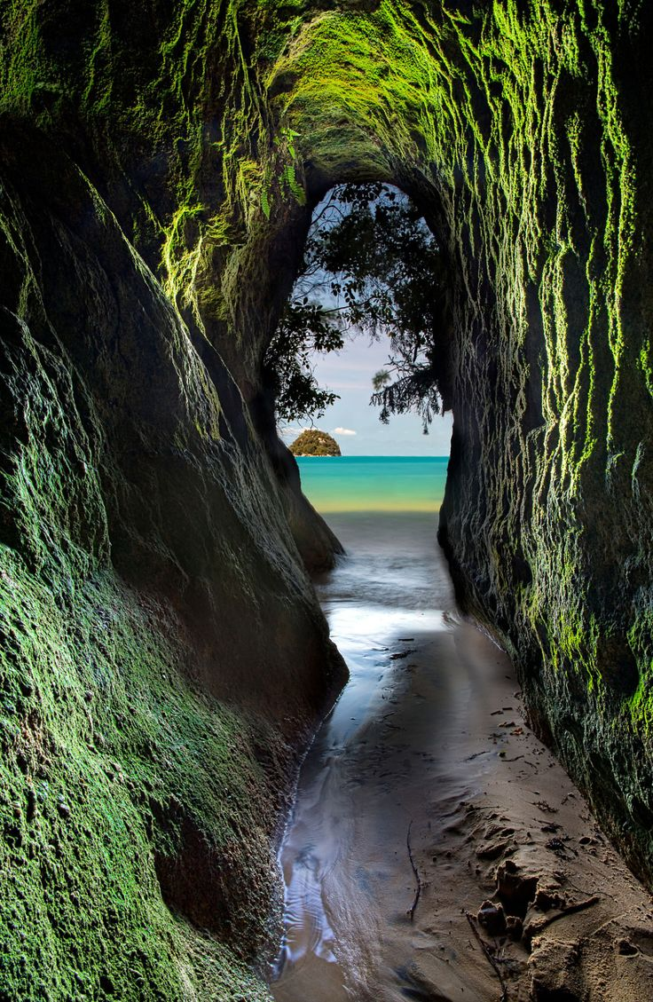 "theencompassingworld: ""Abel Tasman National Park, New Zealand   by Darren Patterson """