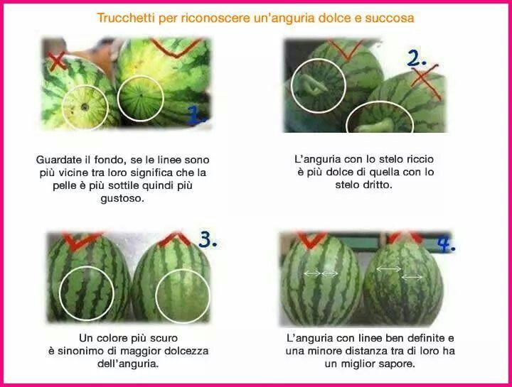 come scegliere l'anguria migliore