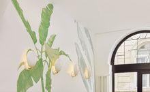 Maisie Café, la nouvelle adresse cool et healthy à Paris | AD Magazine