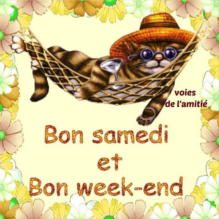 Bon samedi et Bon week-end #cafe chat hamac detente drole