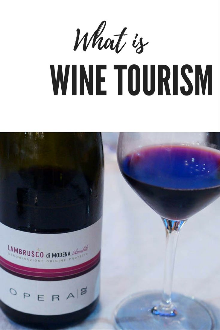 Do you love to travel? Do you love wine? We can tell you the best places to travel for wine in our wine tourism guide!